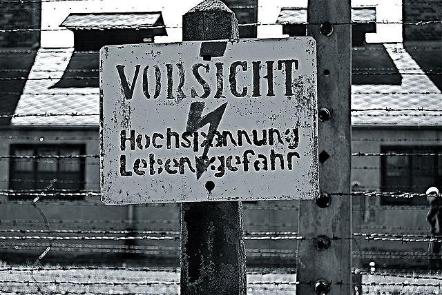 L'eredità di Auschwitz