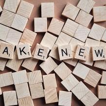 Fake. Vero falso verosimile