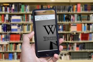 storia pubblica wikipedia