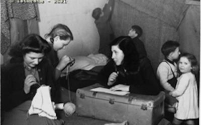 Novecento di confine. Ricerche e comunicazione